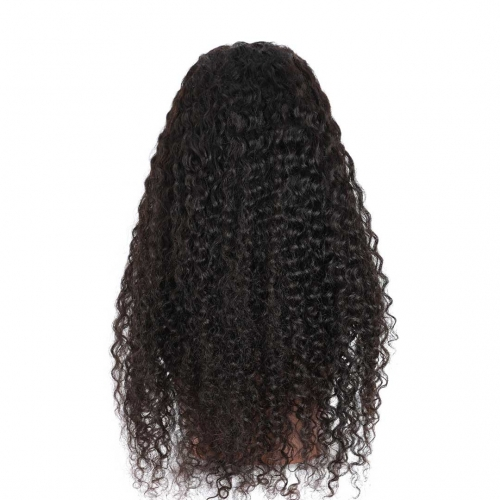 Curly Human Hair Lace Front Wigs 13x4 13x6 African American Wigs Thick HAIRCC HAIR